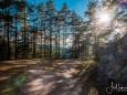 marienstein-naturpark-oetscher-tormaeuer-4346