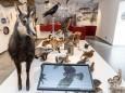 naturkundemuseum-mariazell-26525