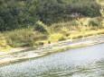 naturparkfest-oetscherbasis-wienerbruck-41569