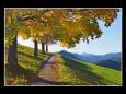 nms-mariazell-2a_bastian-taberhofer_wanderweg