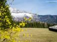 Hagengut - Ötschergräben Frühlingswanderung - 3. April 2016