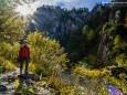 Wanderung durch die Ötschergräben - Hintere Tormäuer von Stierwaschboden bis Erlaufboden am 23. Oktober 2016