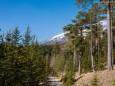 AM WEG zum JÄGERHERZ/Wandertour Erlaufklause-Ötschergräben-Jägerherz-Ötscher Schneegrenze
