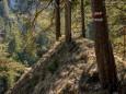 ABSTIEG vom JÄGERHERZ in die Gräben/Wandertour Erlaufklause-Ötschergräben-Jägerherz-Ötscher Schneegrenze