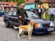 3 Hasen Wirt Peter Kroneis mit seinem 34 Jahre alten Opel Monza - Oldtimer Treffen in Mariazell 2012 - 29. Steirisch-Niederösterreichische Pässefahrt