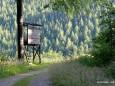 Forststrasse zur Bärenlacken8