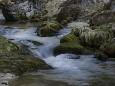 Im Aschgraben - Peter Hollerer - Hobbyfotograf aus dem Mariazellerland
