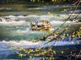 rafting-weltcup-wildalpen-2018-48176