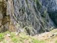 Man erkennt den Weg im unteren Drittel des Bildes - Brunnsee auf die Riegerin - Bergtour - 3.Juli 2014