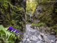 Wildromantisch - Roßlochklamm zwischen Frein und Mürzsteg