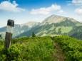TURNTALER KOGEL Blick zur Hohen Veitsch  - Wanderung Rotsohlalm - Turnauer Alm - Turntaler KogelWanderung Rotsohlalm - Turnauer Alm - Turntaler Kogel