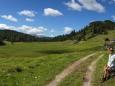 Sackwiesenalm bei der Bodenbauer-Häuslalm-Sackwiesenalm-Sackwiesensee-Wanderung