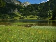 Sackwiesensee bei der Bodenbauer-Häuslalm-Sackwiesenalm-Sackwiesensee-Wanderung
