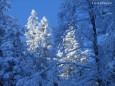 Sauwand Wanderung am 10. Dezember 2014 - Fotoimpressionen von Gerhard Wagner