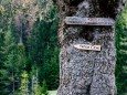schwarzwalster-mariazellerland-hubertussee-rundwanderung-4014