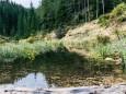 schwarzwalster-mariazellerland-hubertussee-rundwanderung-4036
