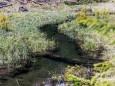 schwarzwalster-mariazellerland-hubertussee-rundwanderung-4040