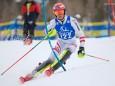 alpine-schuelermeisterschaften-mariazell-c-alois-kislik-9156_res