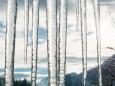 Skifahren beendet und die Sonne kommt - Skitag auf der Mariazeller Bürgeralpe am 6. Jänner 2015 - Hl. Dreikönigstag