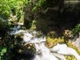 Blick von der Brücke hinunter - Wanderung zum Trefflingfall im Naturpark Ötscher-Tormäuer