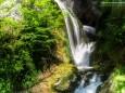 Blick von der Brücke hinauf - Wanderung zum Trefflingfall im Naturpark Ötscher-Tormäuer