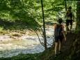 Weiter gehts entlang der Erlauf - Wanderung zum Trefflingfall im Naturpark Ötscher-Tormäuer