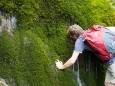 Quelle am Weg zum Türnsee