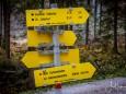 oischingkogel-vord-zellerhut-augenblicke-9086