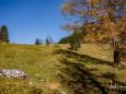 oischingkogel-vord-zellerhut-augenblicke-9092
