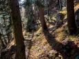 oischingkogel-vord-zellerhut-augenblicke-9179