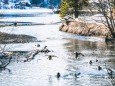 winterwanderung-walstern-hubertussee-19022018-3818
