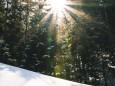 winterwanderung-walstern-hubertussee-19022018