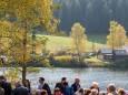 Weisenblasen in der Walstern am Hubertussee - 5. Oktober 2014