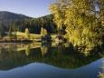 Weisenblasen am Hubertussee in der Walstern