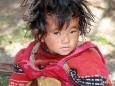 Lhasa - Foto Werner Simi