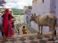 Pushkar Rajasthan - Foto Werner Simi
