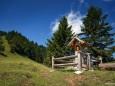 Hier gehts steil rauf auf das Bärenkögerl / Lahnsattel - Wildalm Hütte - Wildalpe - retour