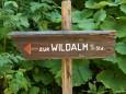 Lahnsattel - Wildalm Hütte - Wildalpe - retour