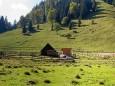 Wildalmhütte mit Blick auf Bärenkögerl (älteres Foto) / Lahnsattel - Wildalm Hütte - Wildalpe - retour