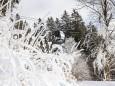 mariazell-seilbahn-basilika-winter-schnee-11012021-0752