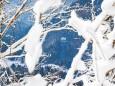 mariazell-seilbahn-basilika-winter-schnee-11012021-0788