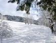 Winterlandschaft in Mariazell am 26. Jänner 2011 - Weg in die Salzaklamm