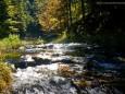 GREIMELGRABEN - Wanderung - Zellerrain - Vorderötscher - Ötschergräben - Stausee - Mitterbach