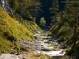 ÖTSCHERGRÄBEN - Wanderung - Zellerrain - Vorderötscher - Ötschergräben - Stausee - Mitterbach
