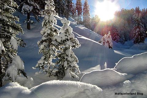 winter_mariazellerland