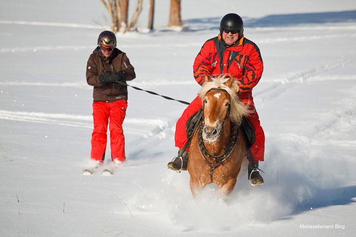 Skijoering mit Werner Feldhammer - Gut Weissenbach