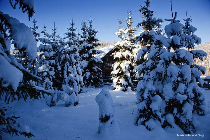 Winter Mariazellerlands 2010