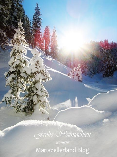 Frohe-Weihnachten_1374