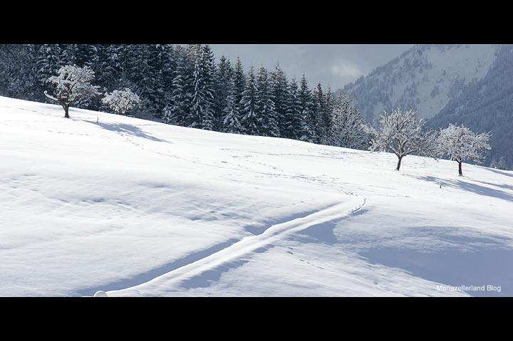 Winterlandschaft in Mariazell am 26.1.2011
