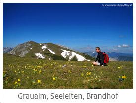 Graualm_Seeleiten_Brandhof